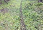 C'est des sentier de chevreuils pas de moto-cross...