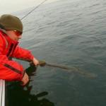 Remettre son poisson à l'Eau est aussi très valorisant.