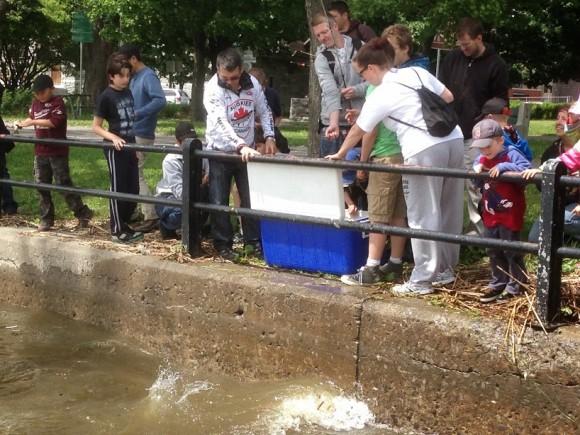 À la fin, les enfants procèdent à la remise à l'eau de leurs captures.